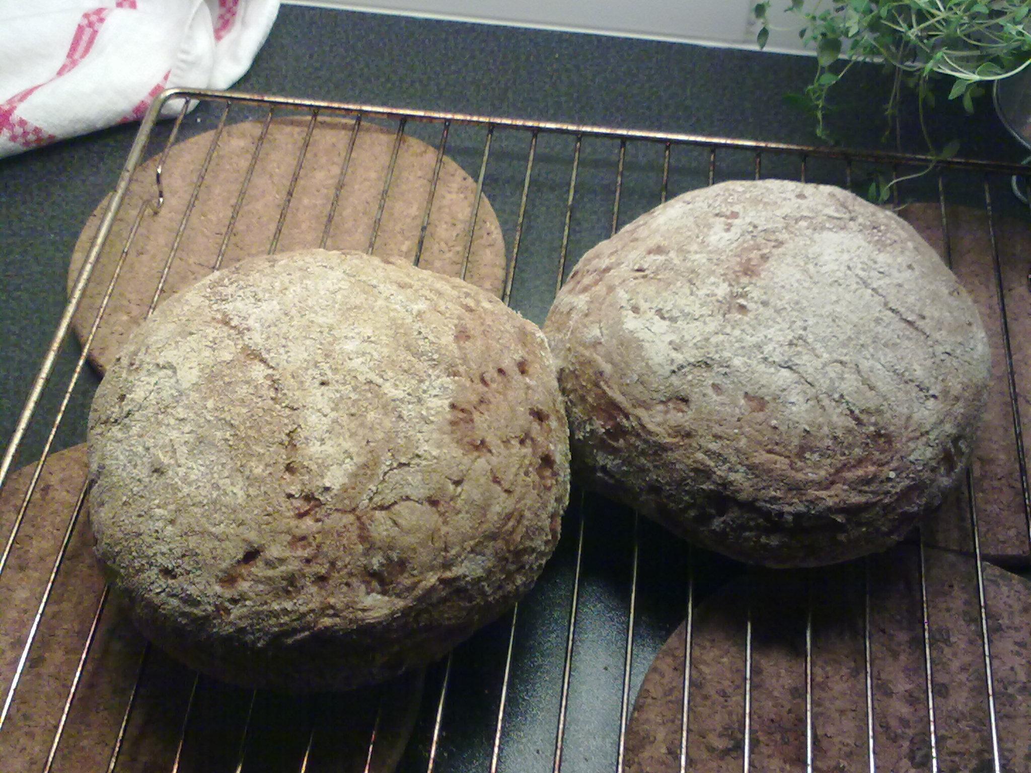 rågbröd med surdeg